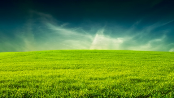 green-grass-and-blue-sky-landscape-472-