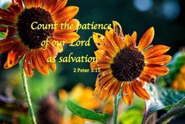 count-patience-jpg